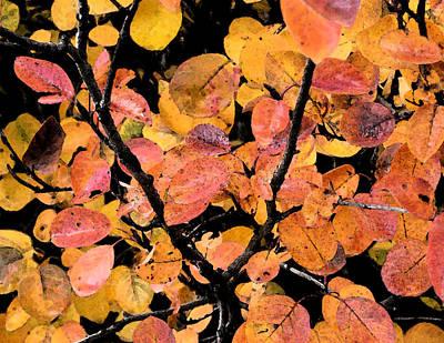 Wall Art - Digital Art - Fall Leaves by Bill Kennedy