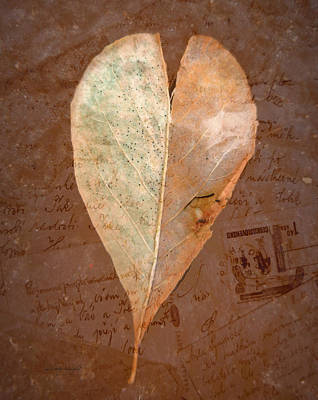 Fall Love Letters Print by Cindy Wright