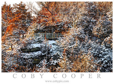Photograph - Fall Meets Winter by Coby Cooper