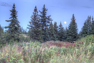 Art Print featuring the photograph Fall Moon by Michele Cornelius