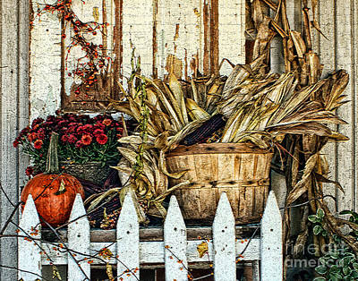 Photograph - Fall On The Farm by Anne Raczkowski