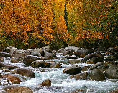 Fall On The Little Susitna River Art Print