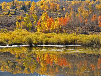 Photograph - Fall On The Marsh by DeeLon Merritt