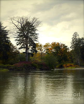 Fall Scenes Photograph - Fall On The Snohomish River by Gwyn Newcombe
