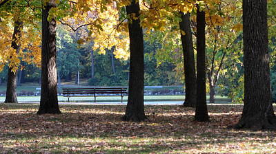 Photograph - Fall Park Bench 1 by Anita Burgermeister