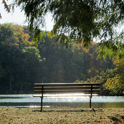Photograph - Fall Park Bench 2 by Anita Burgermeister