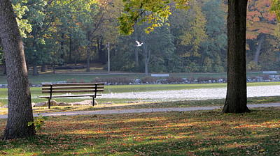 Photograph - Fall Park Bench And Bird by Anita Burgermeister
