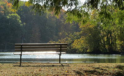Photograph - Fall Park Bench And Ducks by Anita Burgermeister