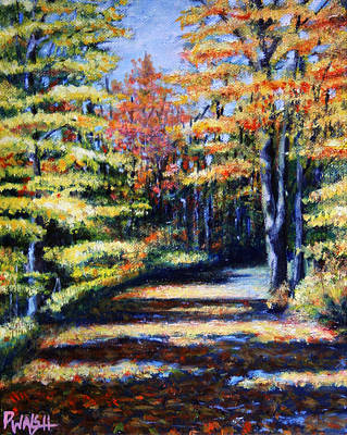 Fall Path Art Print by Paul Walsh