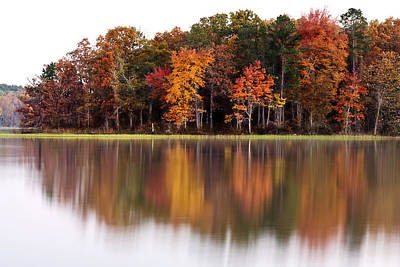 Fall Reflection Art Print by CWellsPhotography