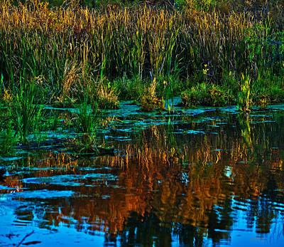 Photograph - Fall Reflection by Edward Peterson