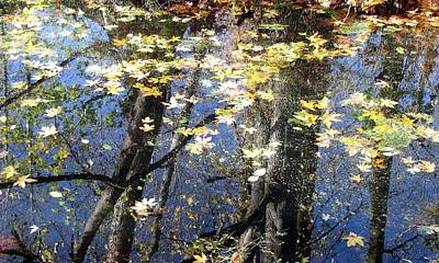 Photograph - Fall Reflections by I'ina Van Lawick