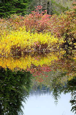 Photograph - Fall Reflections by Sylvia Hart