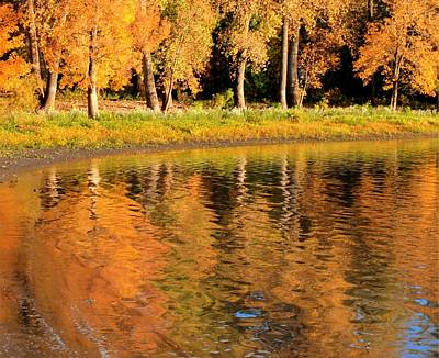 Photograph - Fall Reflections Variations by Coby Cooper