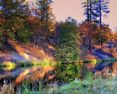 Art Print featuring the photograph Fall River by Irina Hays