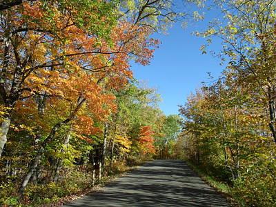 Fall Road In Blue Art Print