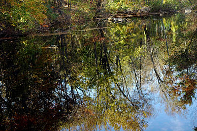 Photograph - Fall Sand Bar Reflections by LeeAnn McLaneGoetz McLaneGoetzStudioLLCcom
