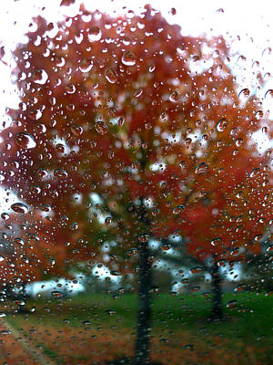 Photograph - Fall Through A Wet Window by Richard Reeve