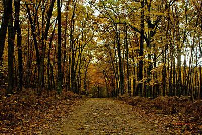 Sunday Drive Photograph - Fall by Timothy J Berndt