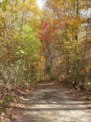 Wall Art - Digital Art - Fall Trail by Bill Kennedy
