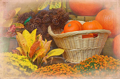 Photograph - Fall Treasures by Sandi OReilly