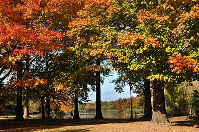 Art Print featuring the photograph Fall Trees And Lake by Diane Lent