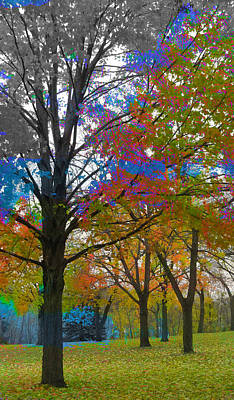 Digital Art - Fall Trees And Paint by Anita Burgermeister