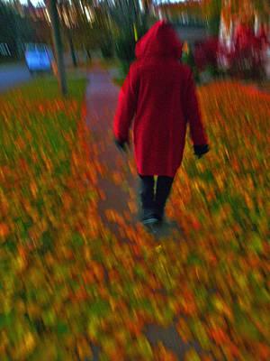 Photograph - Fall Walks by Dragan Kudjerski