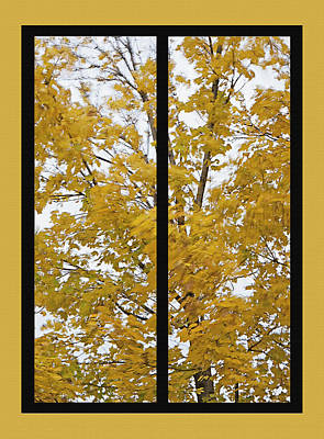 Leafy Mixed Media - Fall Wind Diptych by Steve Ohlsen