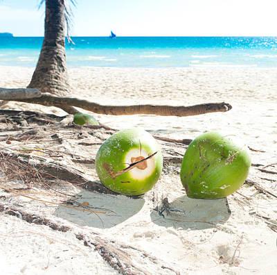 Fallen Coconuts Art Print
