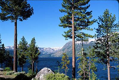 Fallen Leaf Lake Area With Pine Trees In Foreground, Lake Tahoe, California, Usa Art Print by Ellen Skye