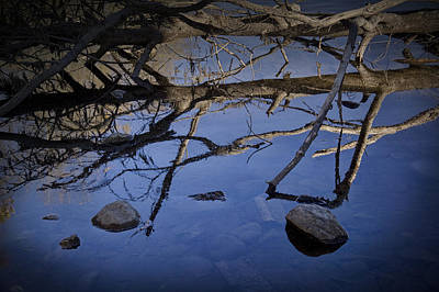 Minimalist Movie Quotes - Fallen tree trunk with reflections on the Muskegon Rive by Randall Nyhof