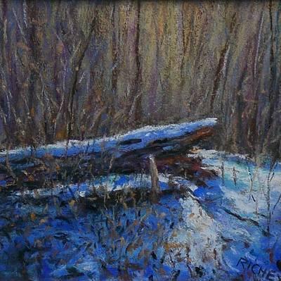 Fallen Wood In Winter Art Print by Bob Richey