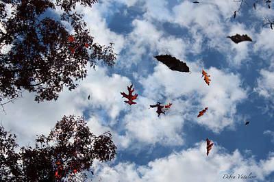 Photograph - Falling by Debra     Vatalaro
