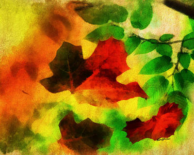 Falling Leaves Art Print by Anthony Caruso