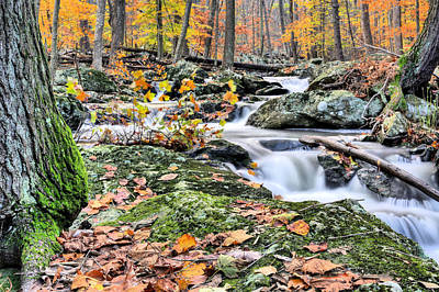 Photograph - Falling Water by JC Findley