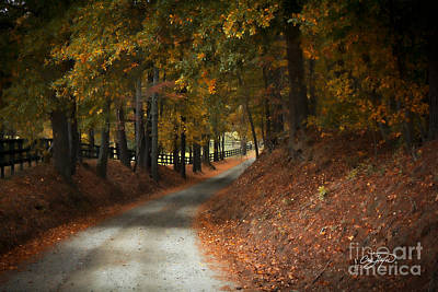 Photograph - Fall's Fast Arrival by Cris Hayes