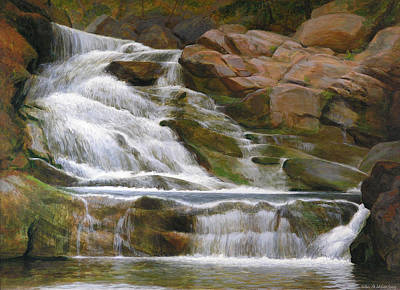 Falls Of Doodletown Creek Art Print by Glen Heberling
