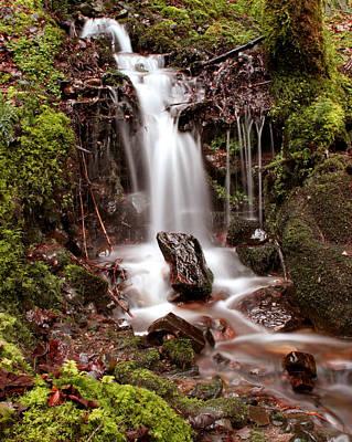 Photograph - Falls On Rock by Joe Macrae