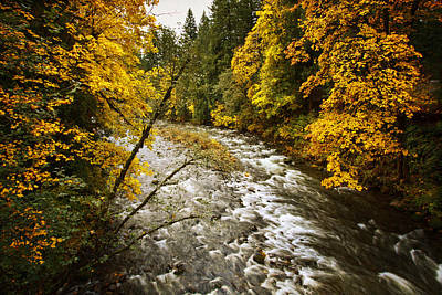Photograph - Falltime On The Salmon River by Wes and Dotty Weber