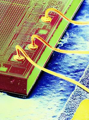 Integrated Photograph - False-colour Sem Of An Integrated Circuit. by Dr Jeremy Burgess