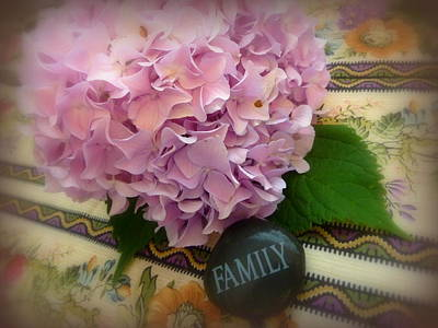 Photograph - Family Hydrangea Floral by Cindy Wright