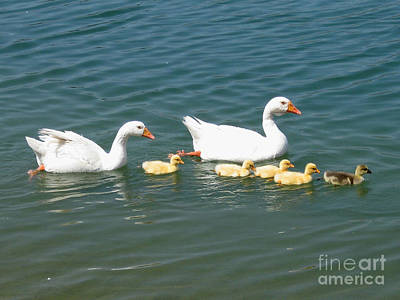 Family Outing On The Lake Art Print by Ed Churchill