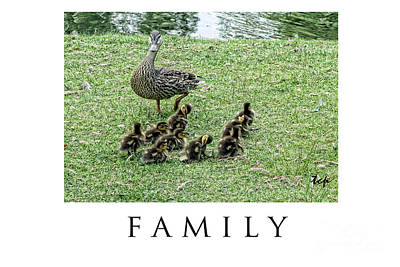 Photograph - Family by Traci Cottingham