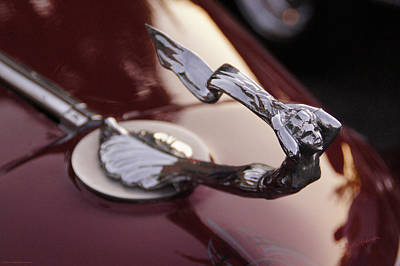 Photograph - Fancy Hood Ornament by Mick Anderson