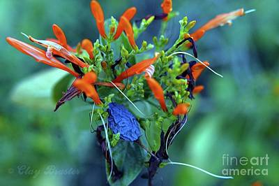 Photograph - Fantasmic Floral by Clayton Bruster