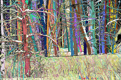 Fantastic Forest Art Print by John Selmer Sr