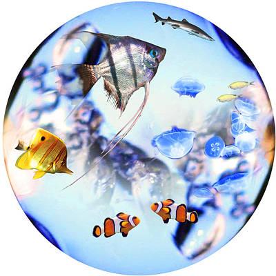 Fantasy Digital Art - Fantasy Fish Nemo by Emily Campbell