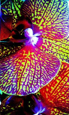 Painting - Fantasy Orchid 1 by Renate Nadi Wesley