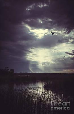 Lake Murray Photograph - Far Away by Iris Greenwell